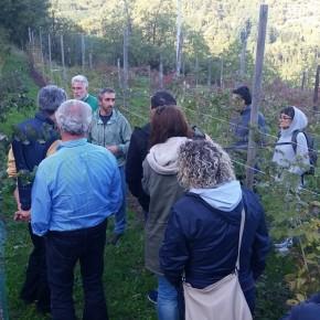 A lezione di frutti di bosco. Da Parma e da Reggio Calabria a Cireglio  La potenza della multifunzionalità della rete Campagna Amica