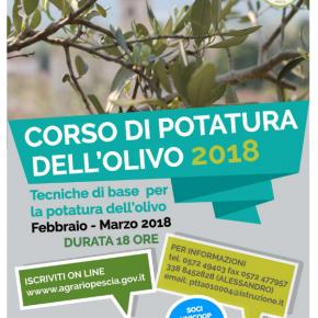 Corso potatura Olivo Istituto Agrario