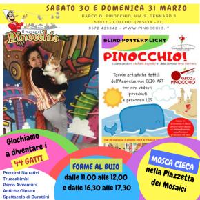 Parco di Pinocchio, giochi e laboratori ispirati ai 44 gatti.  In programma Forme al buio: attività inclusive anche per ipovedenti e non vedenti