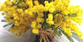 In aumento la vendita sul Mercato dei Fiori della Toscana a Pescia per la Festa della Donna