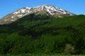 Escursione CAI 21 luglio 2019 Prati, paludi, boschi, panorami immensi e creste intorno al Cimone