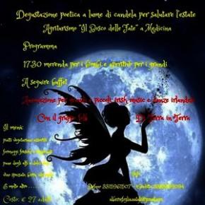 """Sabato 7 settembre. Festa delle Fate - Fairy Fest """"Il bosco della fate"""" a Medicina"""