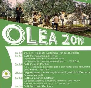 """Pescia sabato 23 novembre Istituto Tecnico Agrario """"D. Anzilotti"""". ''Olea'' 2019."""