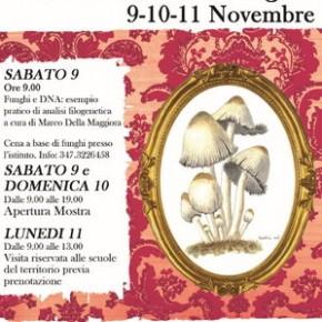 Istituto Agrario - 9-10-11 novembre MOSTRA MICOLOGICA 2019 con cena sabato 9.