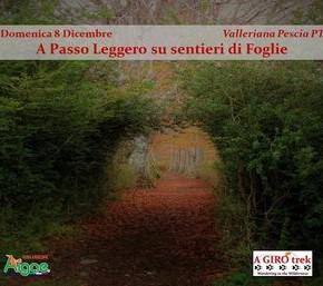 Domenica 8 dicembre 2019 visita guidata alle Castella Medievali della Valleriana.