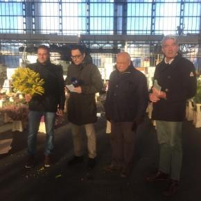 Dal mercato dei fiori di Pescia alle donne di Codogno 1500 piante di mimosa           Il sindaco Passerini chiama commosso Giurlani per ringraziarlo           Tanti ostacoli burocratici ma la Protezione Civile ha consegnato il tutto