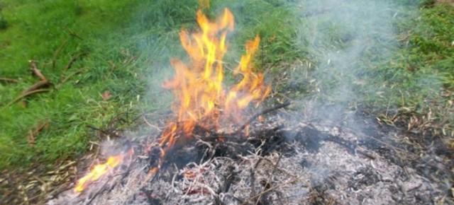 Regione Toscana  Prorogato il divieto assoluto di abbruciamenti fino al 15 aprile 2020