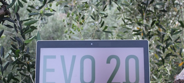 OLIO E FRANTOIANI: giovane innovatore e portatore di esperienza insieme     Da tradizione e innovazione nascerà l'extravergine del Pif Evo 2.0     Continuano le attività del Progetto integrato di filiera  EVO 2.0: dal vivaio alla tavola
