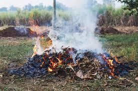 Divieto assoluto di abbruciamenti fino al 25 settembre 2020 e Avviso di pulizia terreni incolti