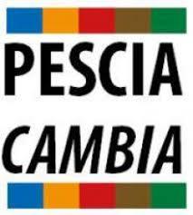 """Pescia Cambia """" Niccolai dimostra in poche parole perché i pesciatini abbandonano il Pd''."""