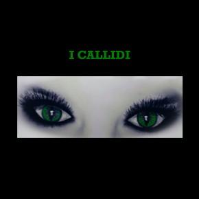 I Callidi, nuova opera letteraria di Sissi Raffaelli