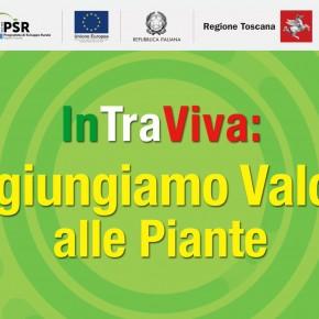 In.Tra.Viva. LOGISTICA INNOVATIVA PER AGGIUNGERE VALORE ALLE PIANTE  Corso gratuito per tutte le aziende vivaistiche della Toscana     Primo appuntamento ONLINE IL 23 FEBBRAIO