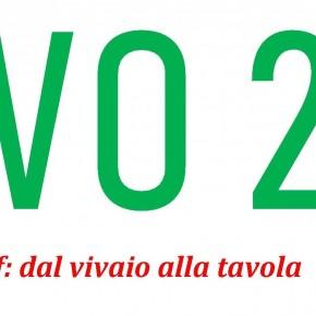 EVO 2.0 IN SEMINARIO. La rivoluzione tecnologica in frantoio  L'appuntamento fa parte del progetto integrato di filiera della rete Coldiretti     Estrarre il meglio dalle olive toscane,  con l'aiuto di 'macchine' rispettose dell'eccellenza organolettica e dell'ambiente