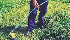 """Bellandi """" Non soddisfatti del taglio dell'erba dei primi tre quadranti, Alia correrà ai ripari """"    Il programma dei prossimi tagli a Pescia"""