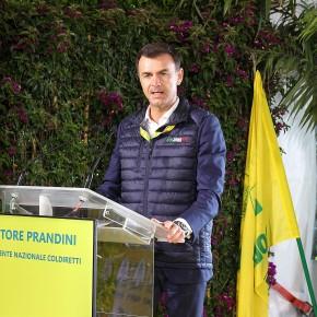 ONU, FOOD SUMMIT. Riconosciuto il ruolo di Coldiretti  nella promozione di un modello di agricoltura attento all'innovazione e basato su sviluppo sostenibile